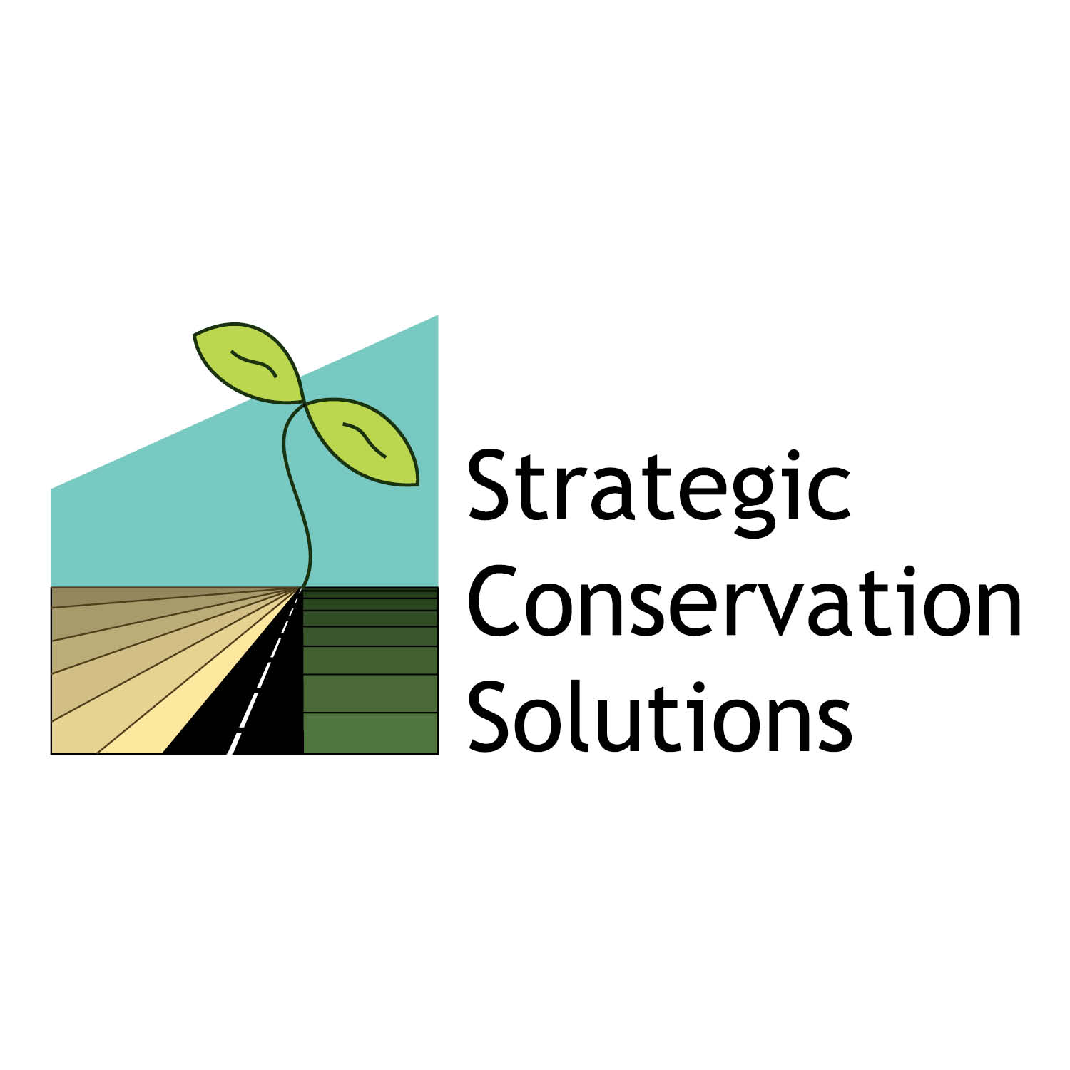 Strategic Conservation Solutions